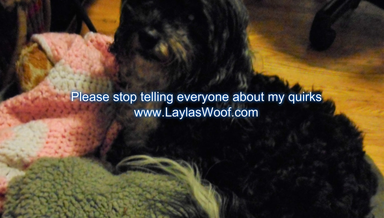 Old Lady Quirks – Layla's Woof